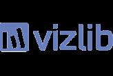 TIQ Solutions Vizlib Reseller und Implementierungspartner