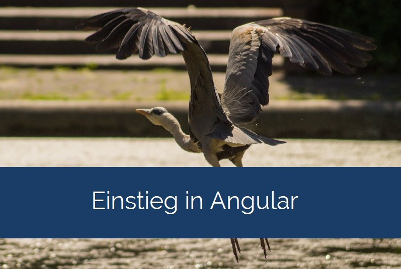 Einstieg in Angular