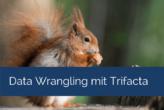 Data Wrangling mit Trifacta