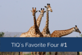 TIQ's Favorite Four – Neuigkeiten im Bereich Data Analytics