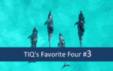 TIQ's Favorite Four  – Neuigkeiten im Bereich Data Analytics #3